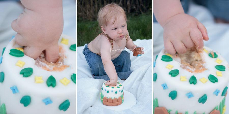 Photographie bébé anniversaire Smash the cake