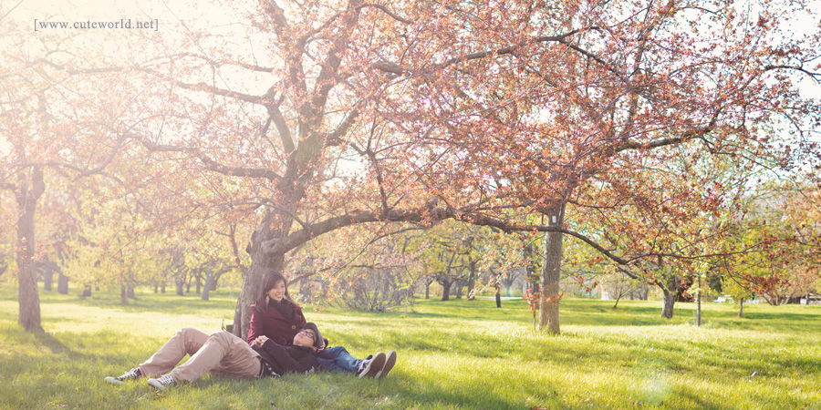 Photo de couple relaxant sous un arbre
