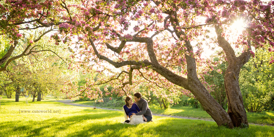 maternite-couple-domicile-fleur11