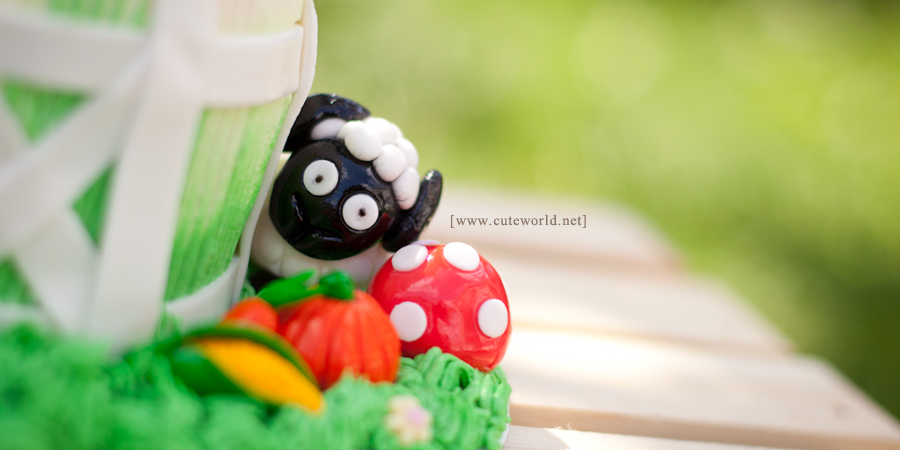 anniversaire-smash-the-cake-005